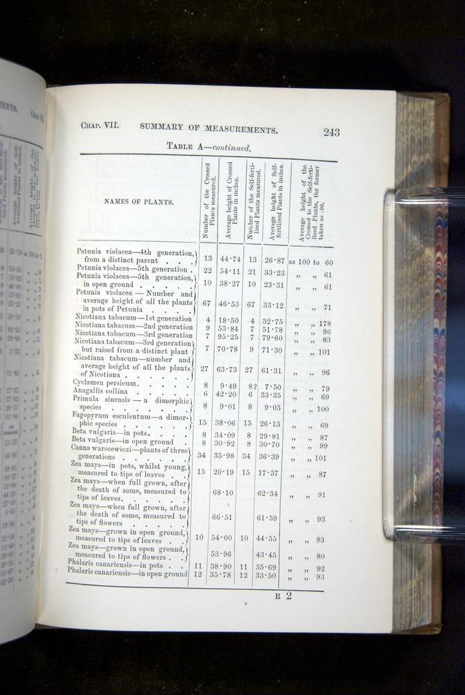 Image of Darwin-F1249-1876-243