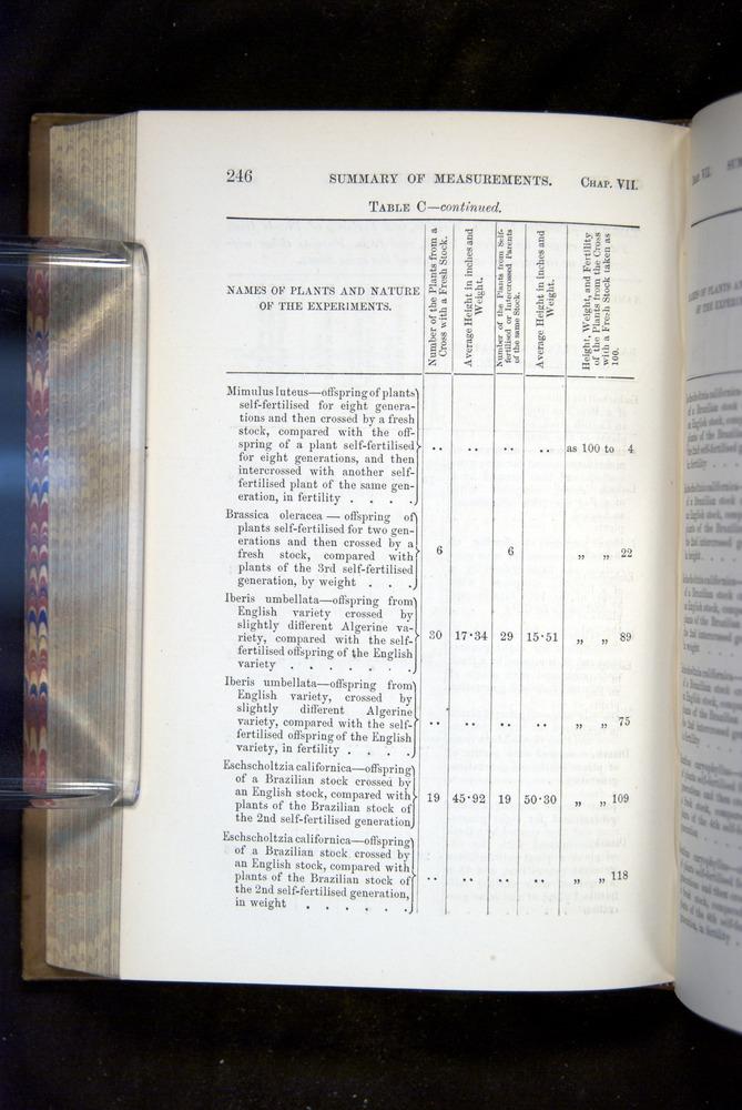Image of Darwin-F1249-1876-246
