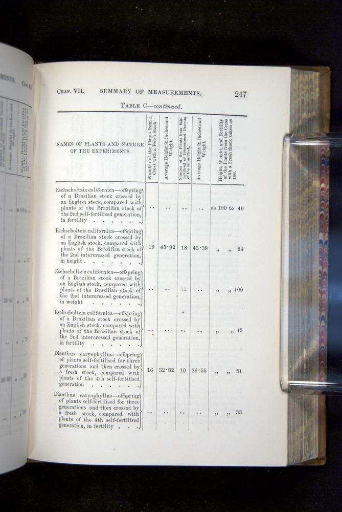 Image of Darwin-F1249-1876-247