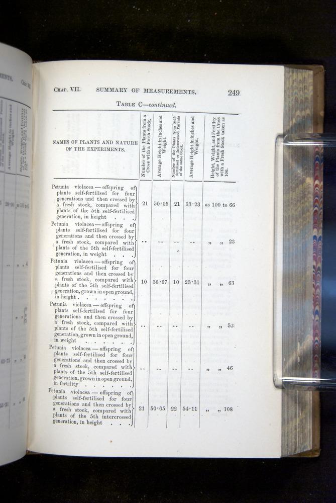 Image of Darwin-F1249-1876-249