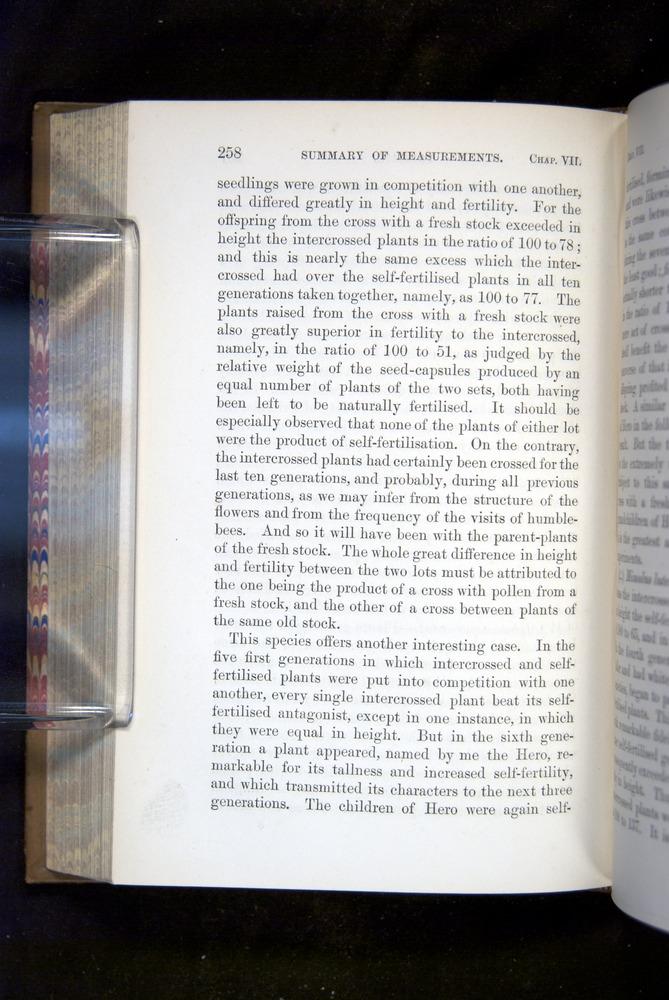 Image of Darwin-F1249-1876-258