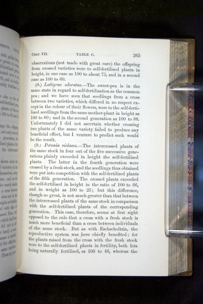 Image of Darwin-F1249-1876-265