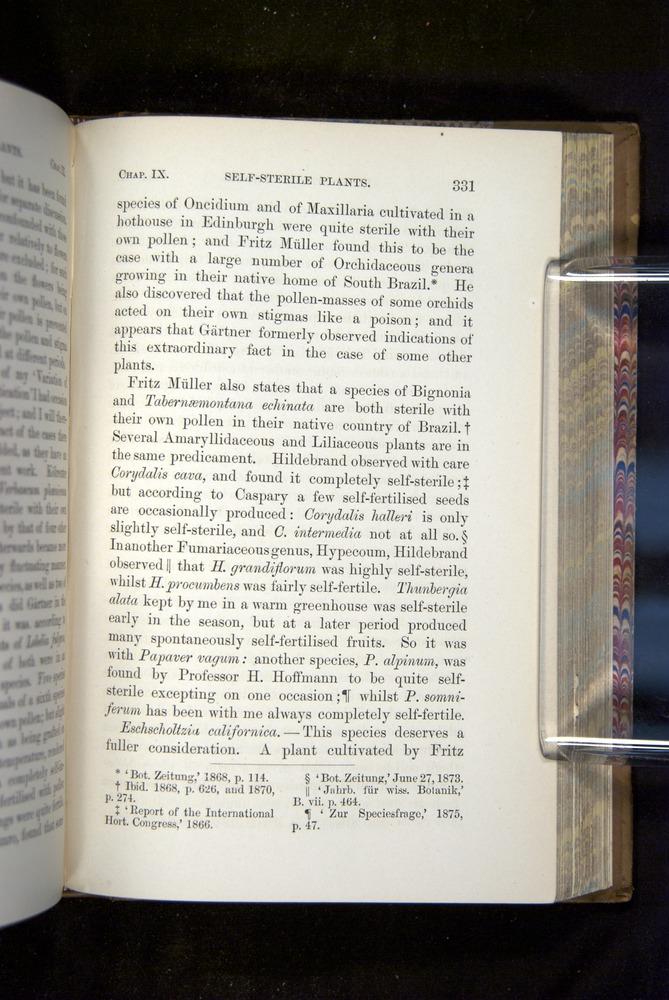 Image of Darwin-F1249-1876-331