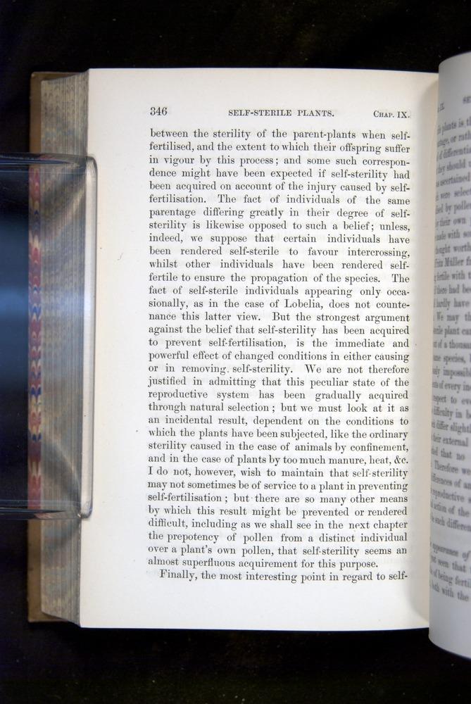 Image of Darwin-F1249-1876-346