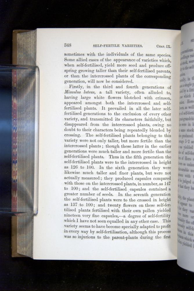 Image of Darwin-F1249-1876-348