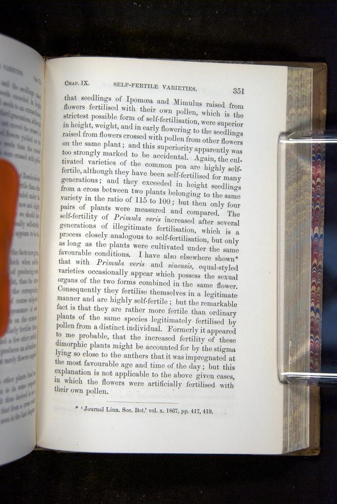 Image of Darwin-F1249-1876-351
