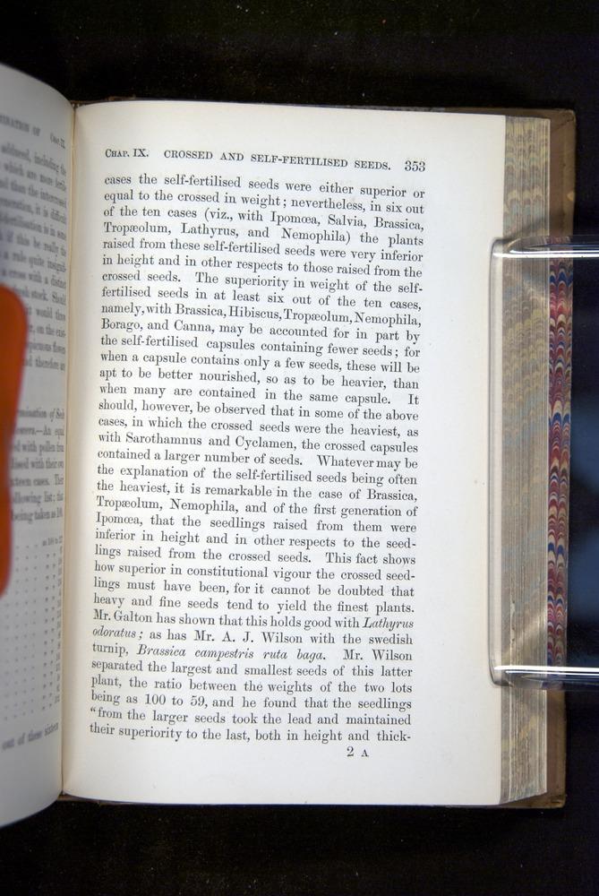 Image of Darwin-F1249-1876-353