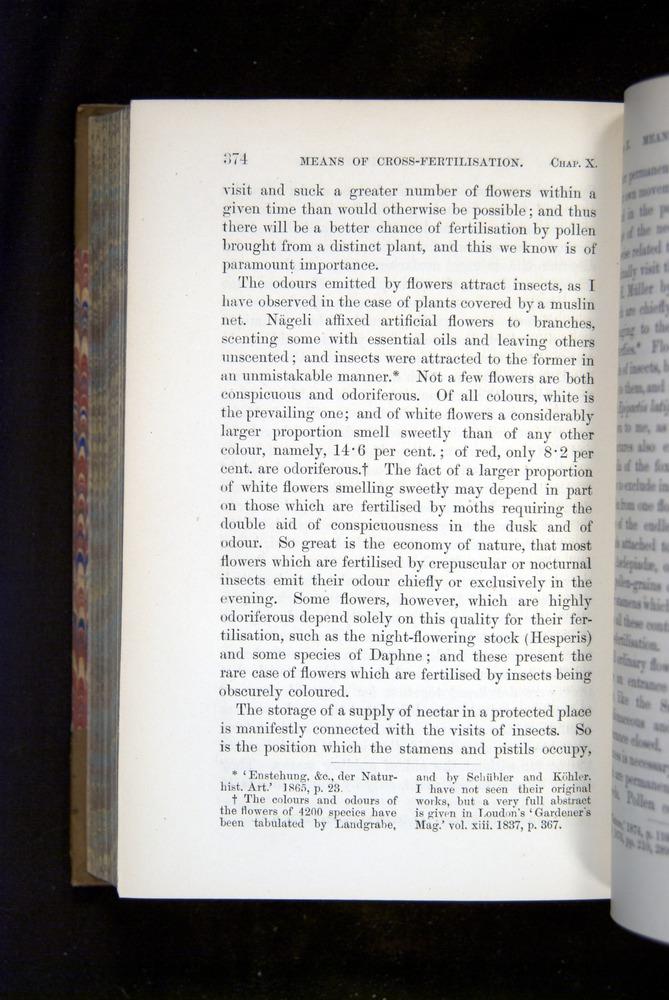 Image of Darwin-F1249-1876-374