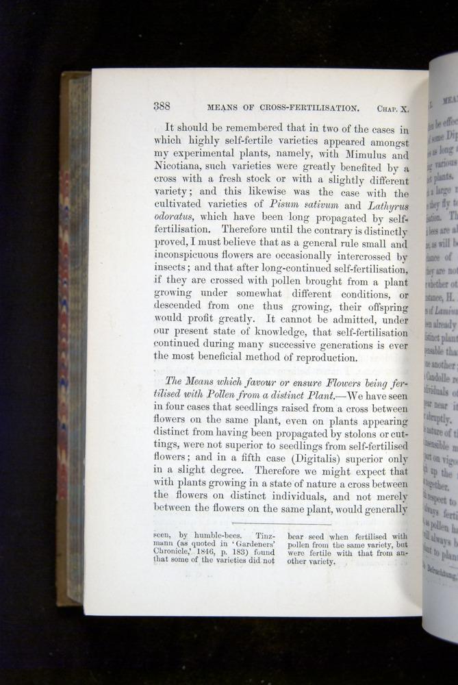 Image of Darwin-F1249-1876-388