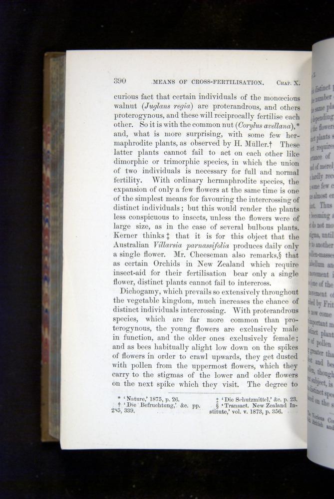Image of Darwin-F1249-1876-390