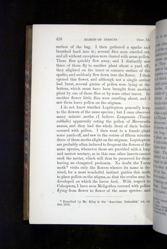 Image of Darwin-F1249-1876-418
