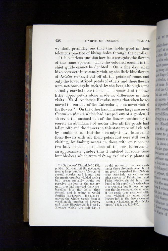 Image of Darwin-F1249-1876-420