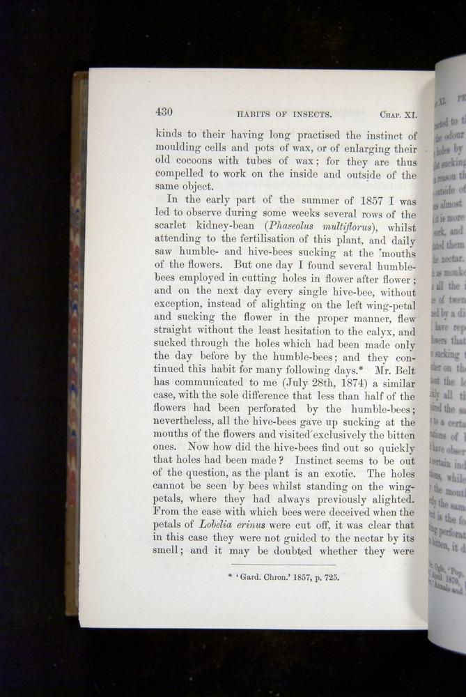 Image of Darwin-F1249-1876-430