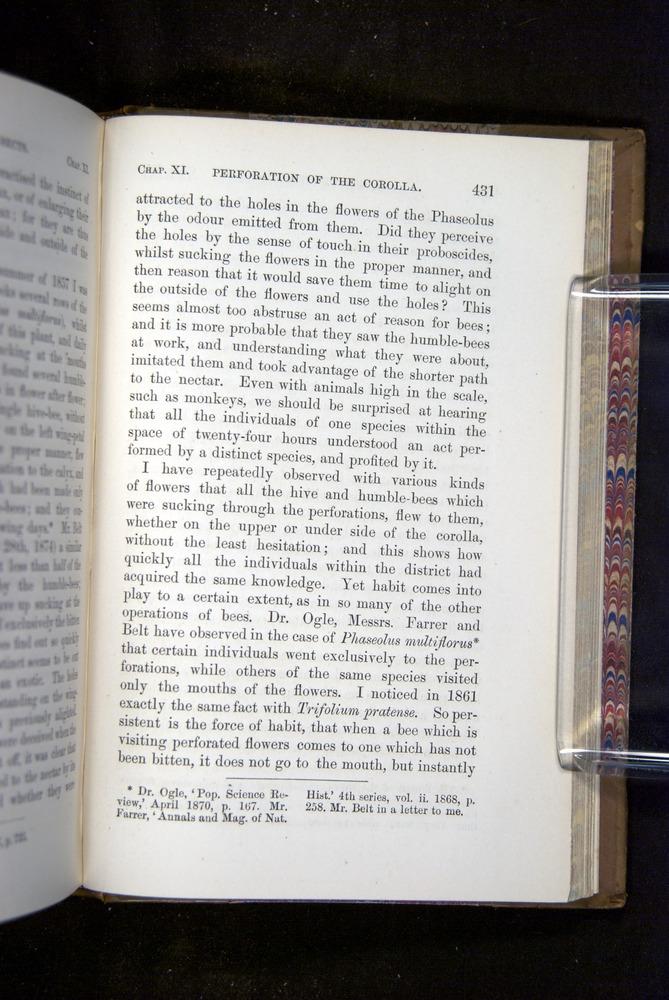 Image of Darwin-F1249-1876-431
