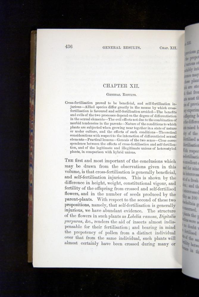 Image of Darwin-F1249-1876-436