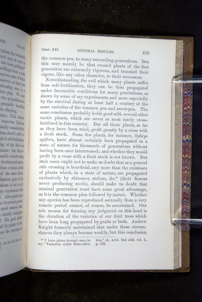 Image of Darwin-F1249-1876-439