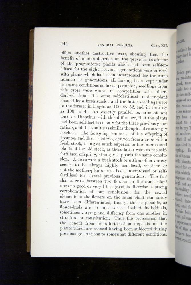 Image of Darwin-F1249-1876-444