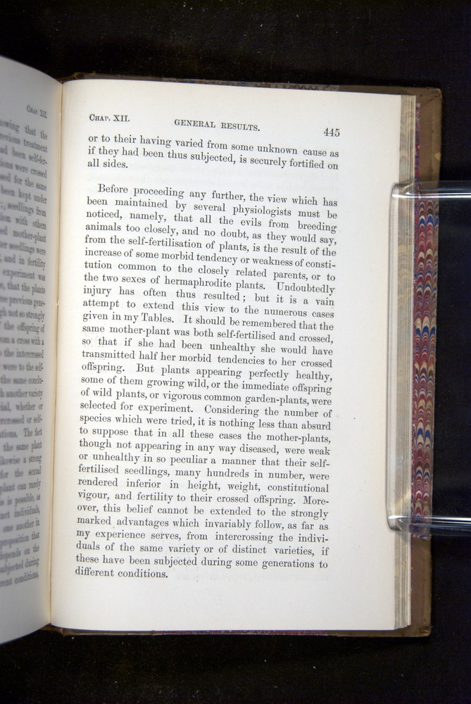 Image of Darwin-F1249-1876-445