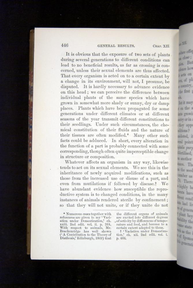 Image of Darwin-F1249-1876-446