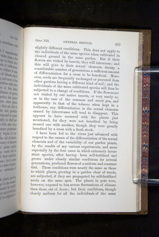 Image of Darwin-F1249-1876-453