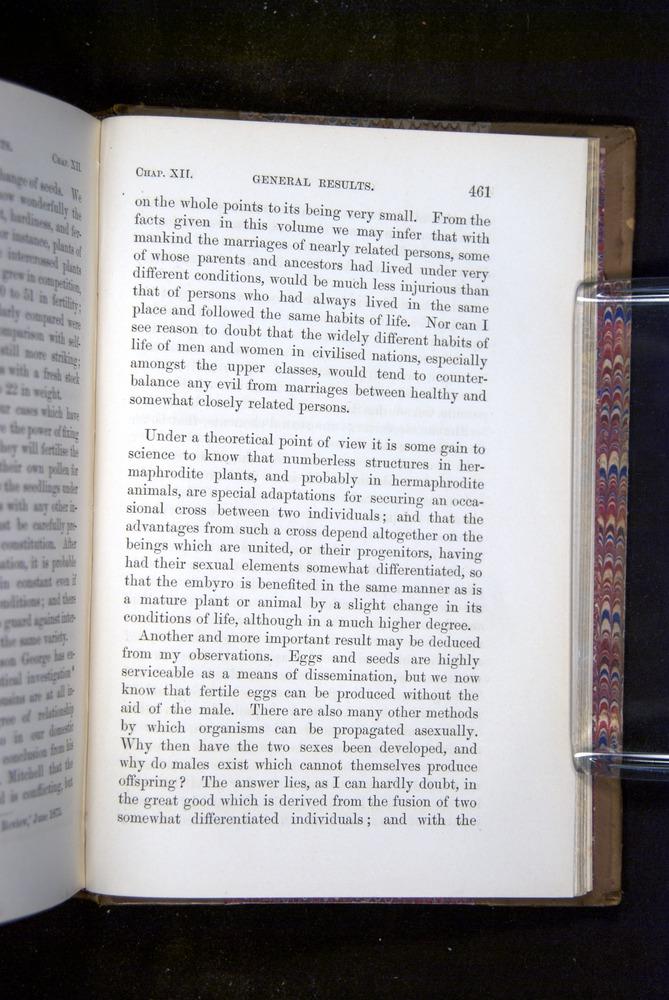 Image of Darwin-F1249-1876-461