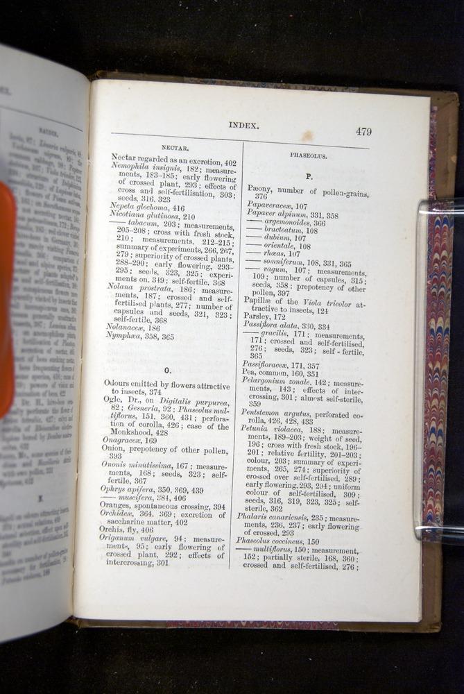 Image of Darwin-F1249-1876-479