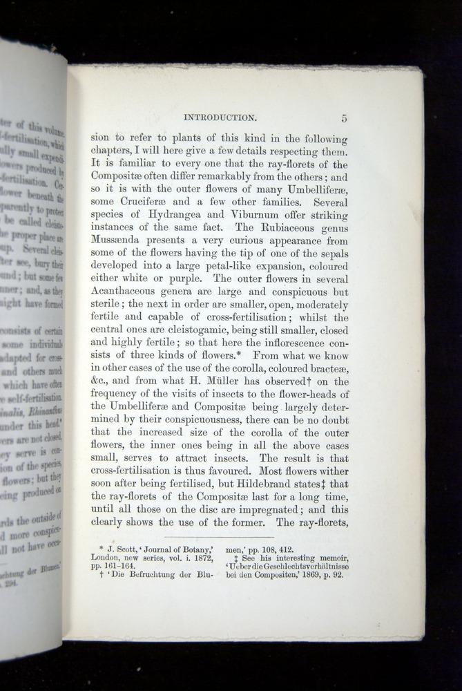Image of Darwin-F1277-1877-005