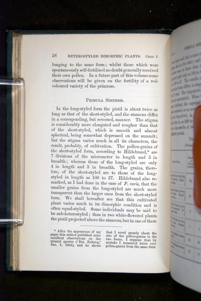 Image of Darwin-F1277-1877-038