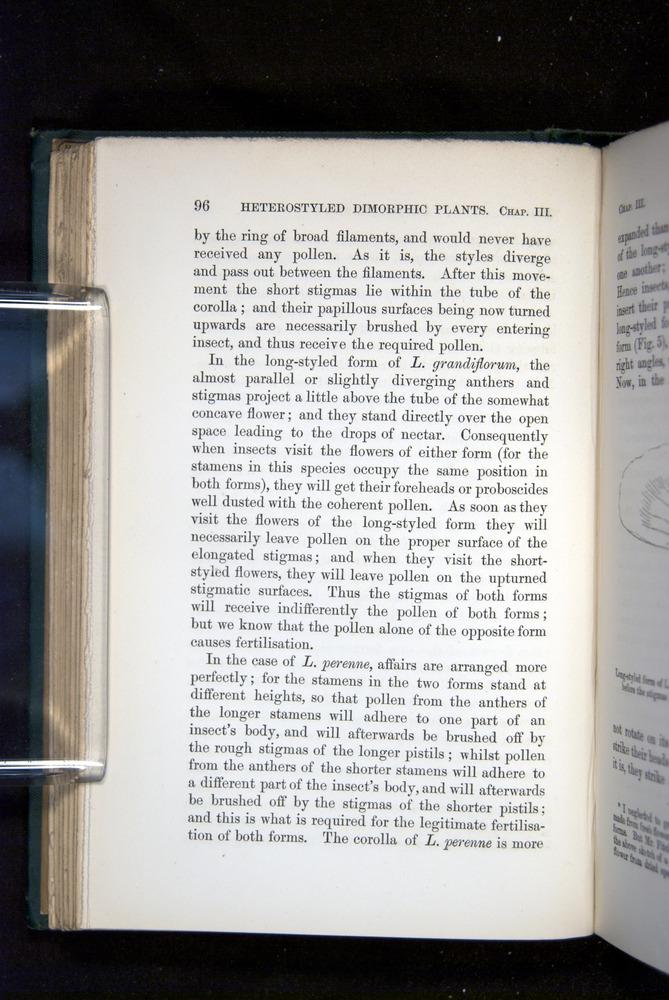 Image of Darwin-F1277-1877-096