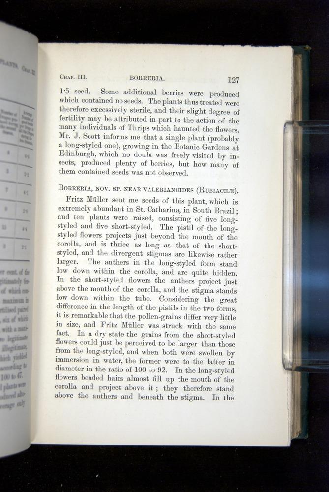 Image of Darwin-F1277-1877-127