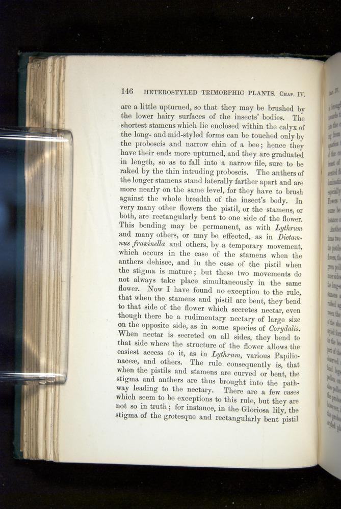 Image of Darwin-F1277-1877-146