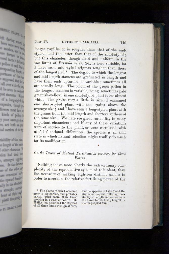 Image of Darwin-F1277-1877-149