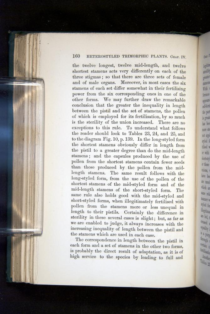 Image of Darwin-F1277-1877-160