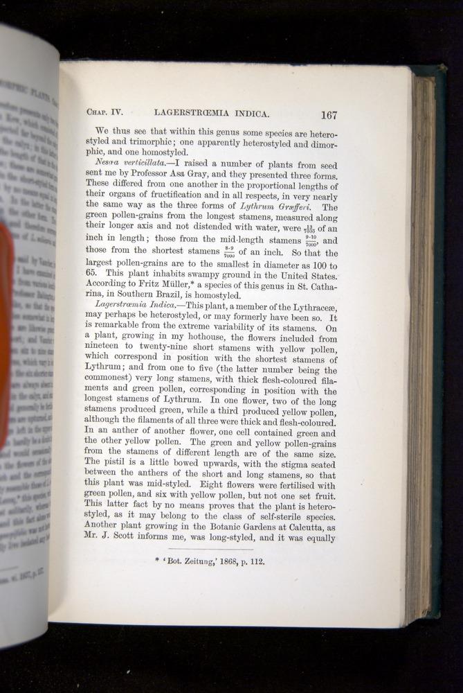 Image of Darwin-F1277-1877-167