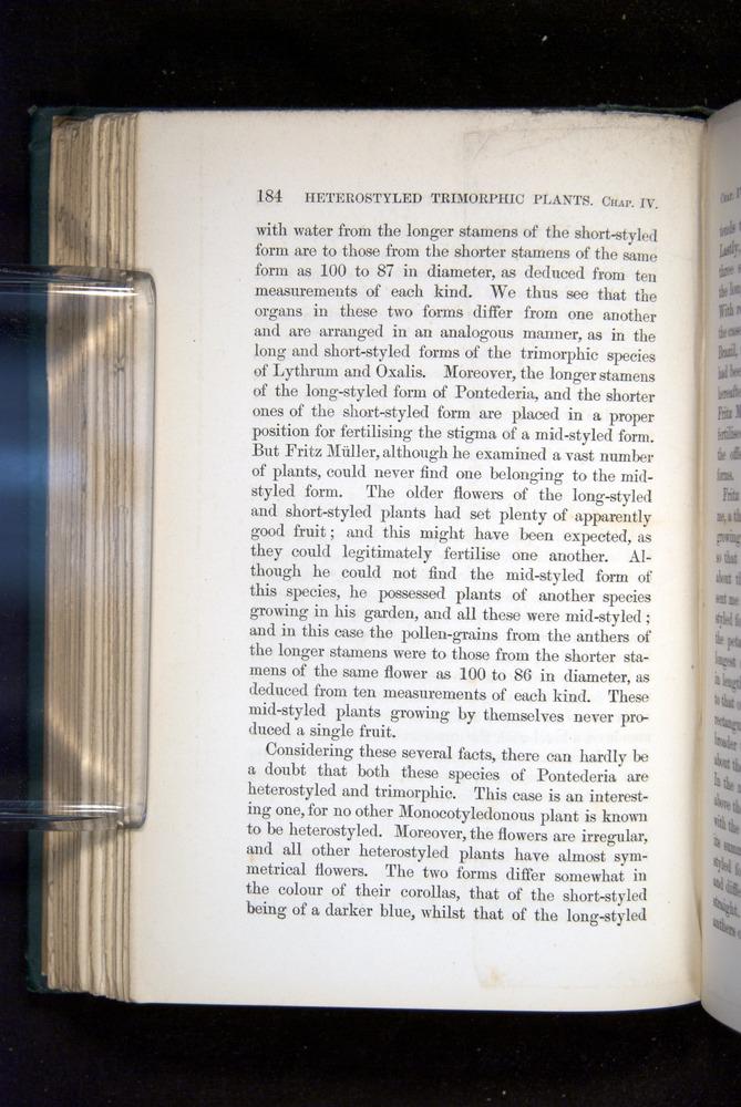 Image of Darwin-F1277-1877-184