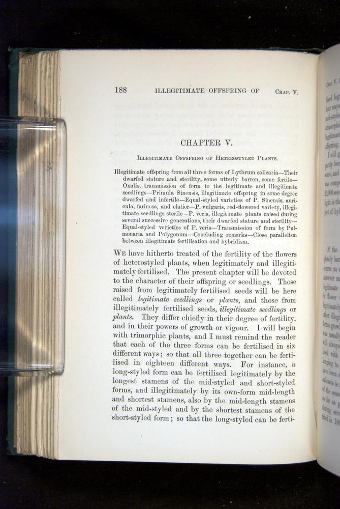 Image of Darwin-F1277-1877-188