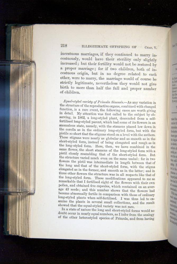 Image of Darwin-F1277-1877-218