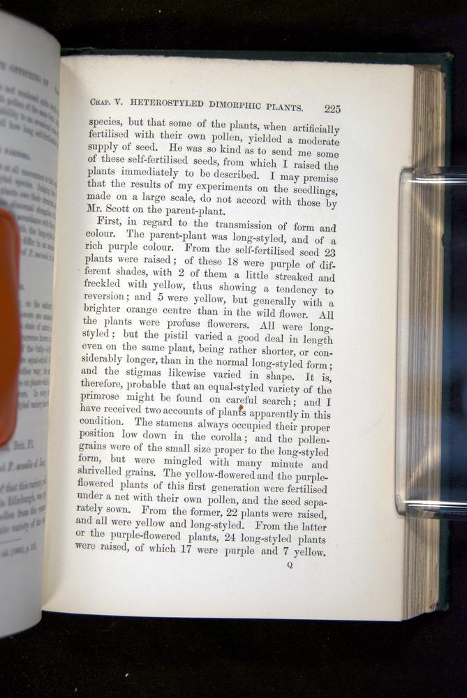 Image of Darwin-F1277-1877-225