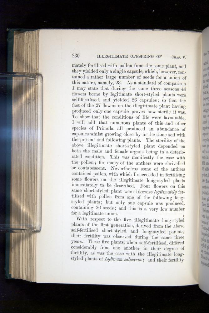 Image of Darwin-F1277-1877-230