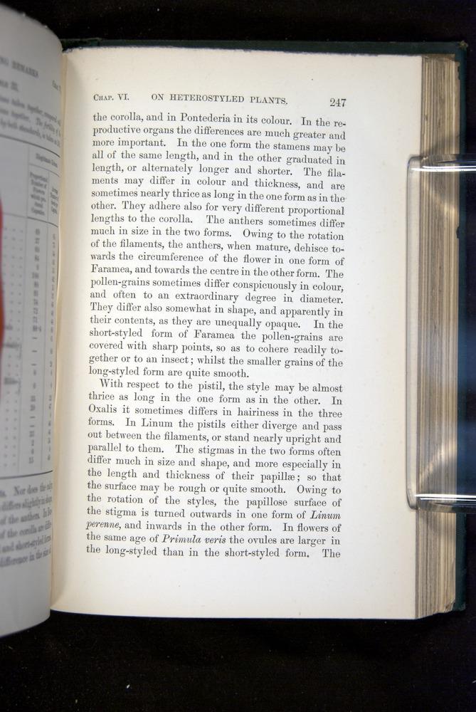Image of Darwin-F1277-1877-247