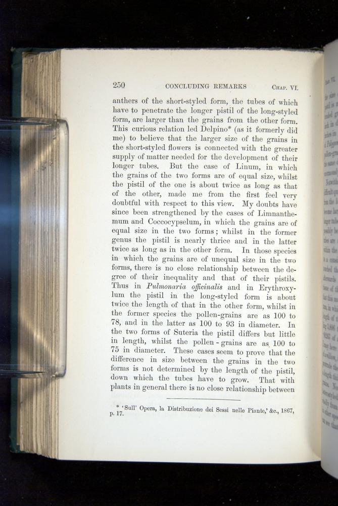 Image of Darwin-F1277-1877-250