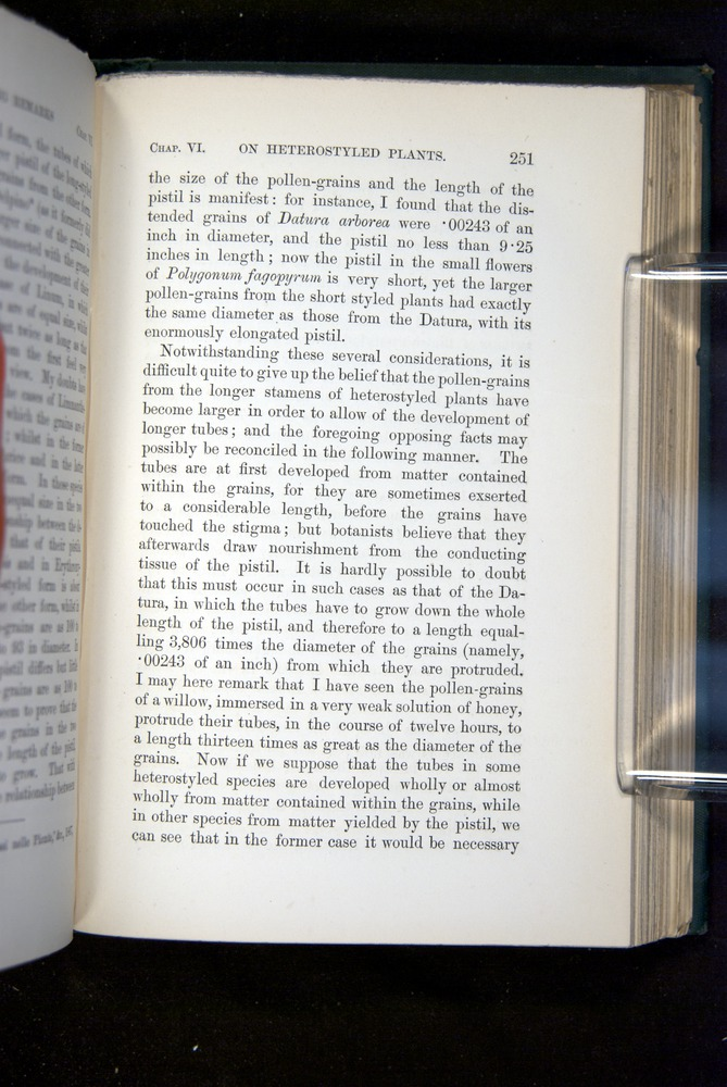 Image of Darwin-F1277-1877-251