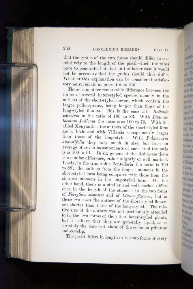 Image of Darwin-F1277-1877-252