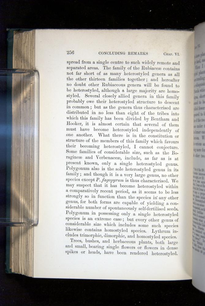 Image of Darwin-F1277-1877-256