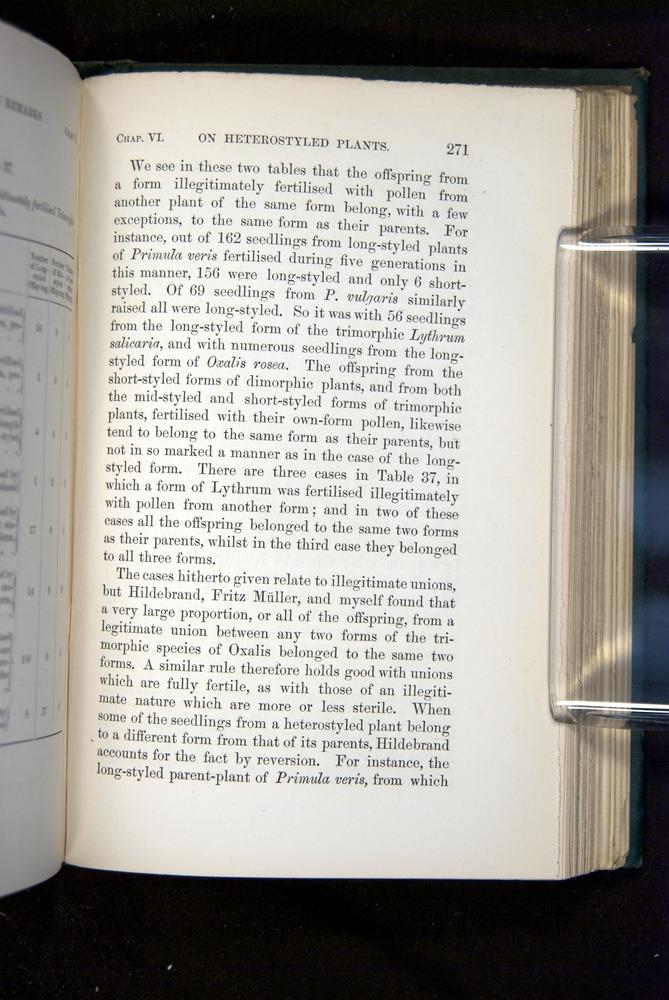 Image of Darwin-F1277-1877-271