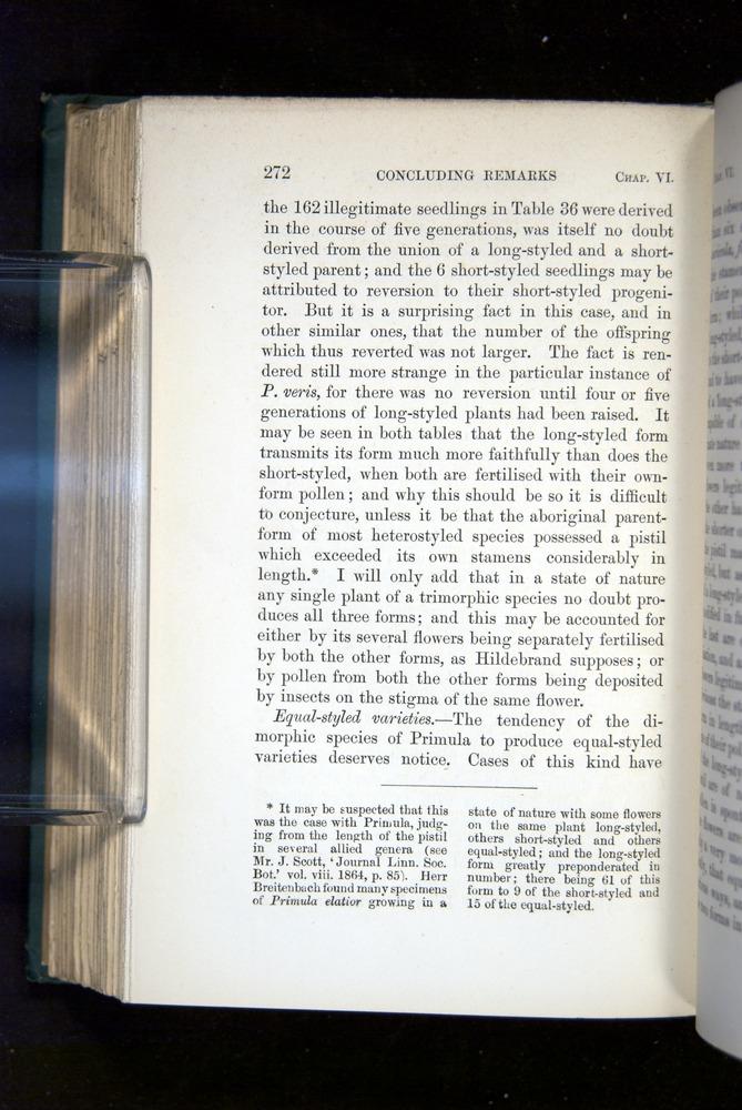 Image of Darwin-F1277-1877-272