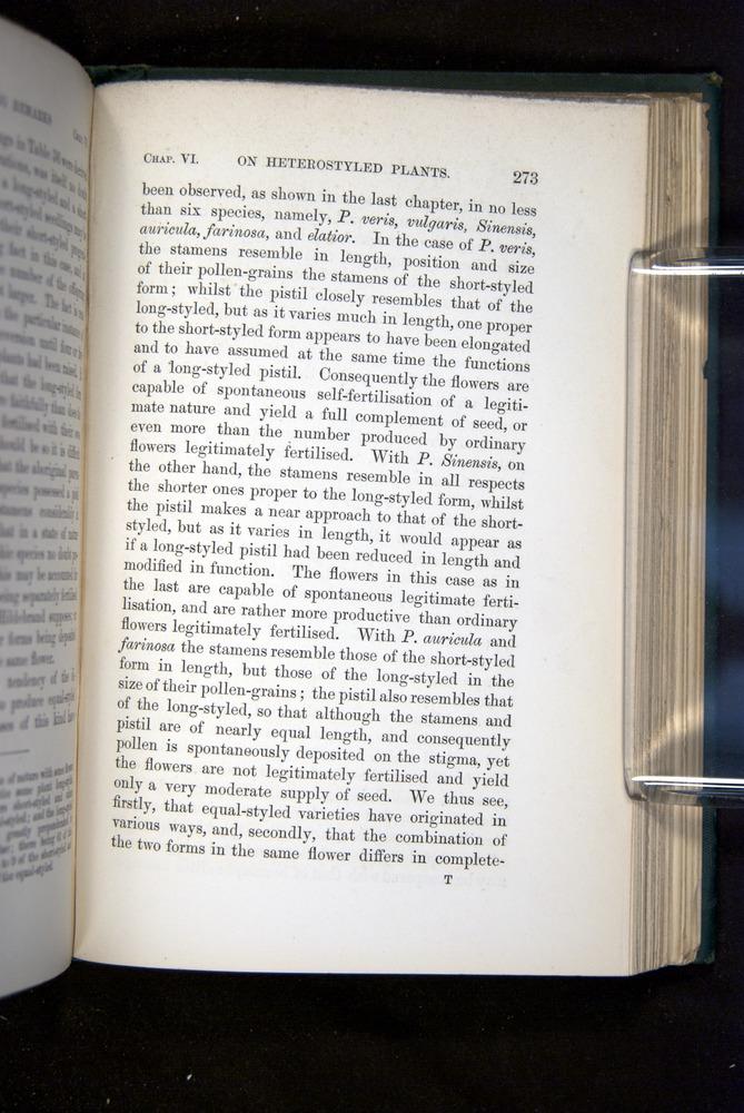 Image of Darwin-F1277-1877-273