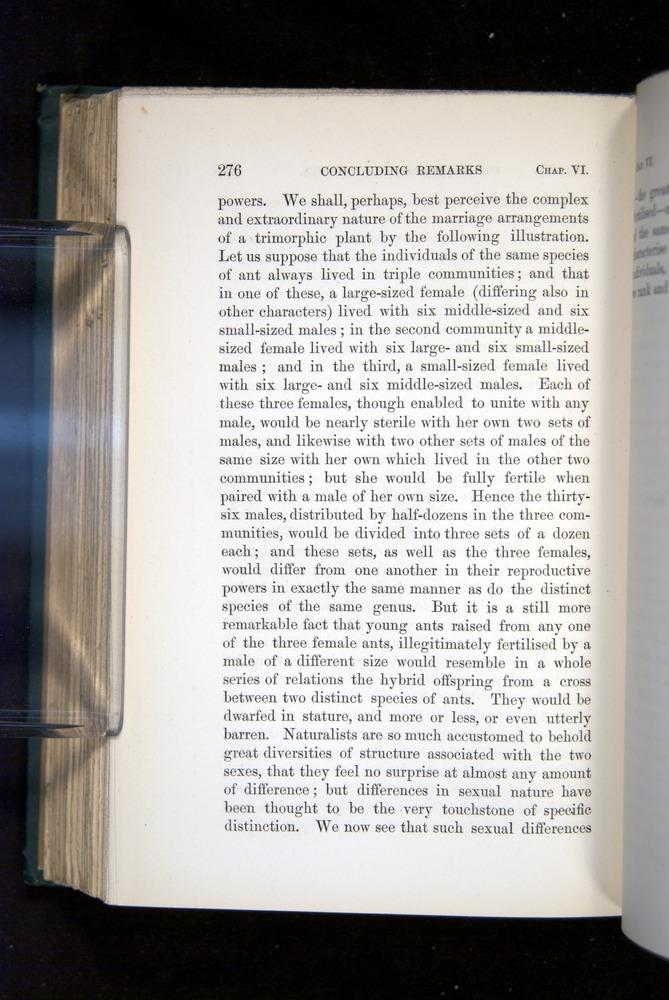 Image of Darwin-F1277-1877-276