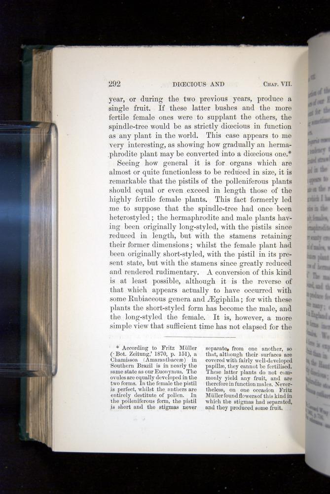 Image of Darwin-F1277-1877-292