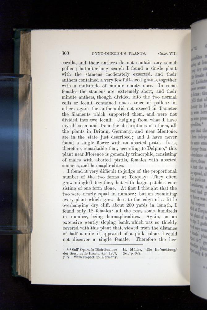 Image of Darwin-F1277-1877-300